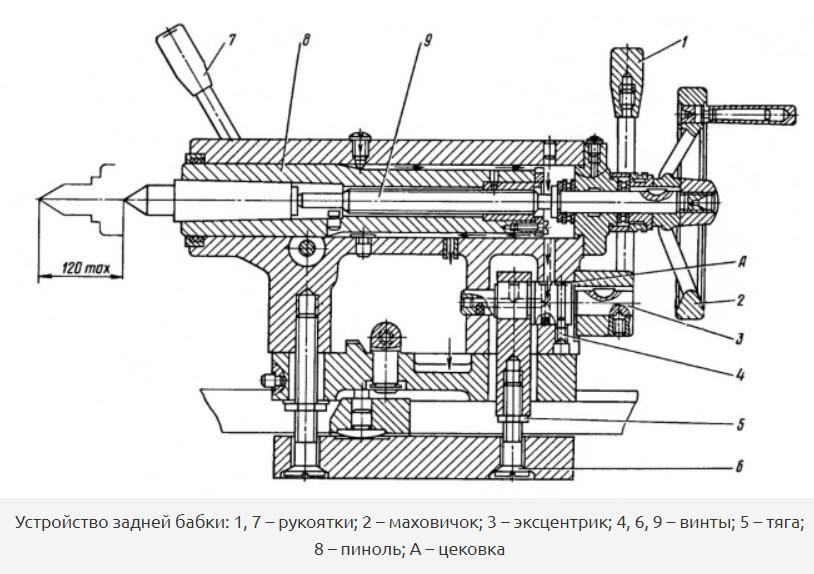 zadn-babka-2